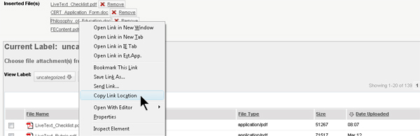 Right click over one of your attached documents and select Copy Link Location (Firefox) or Copy Shortcut (Internet Explorer)