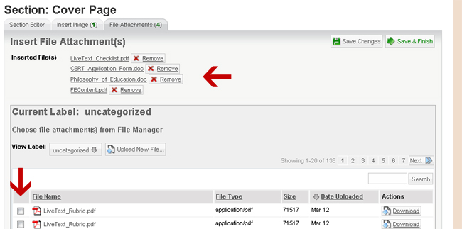 Use the checkboxes to add and remove file attachments. A Remove button is also provided for documents already attached.